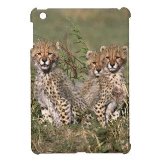 Africa; Kenya; Masai Mara; Three cheetah cubs Case For The iPad Mini