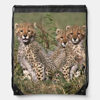 Africa; Kenya; Masai Mara; Three cheetah cubs Drawstring Bag