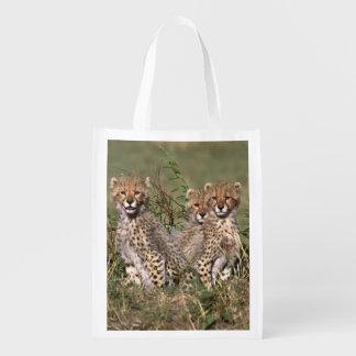 Africa; Kenya; Masai Mara; Three cheetah cubs Reusable Grocery Bag