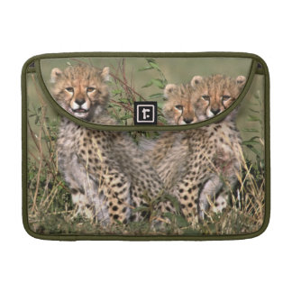 Africa; Kenya; Masai Mara; Three cheetah cubs Sleeve For MacBooks
