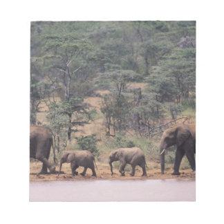 Africa, Kenya, Nanyuki, Mpala. African Notepad