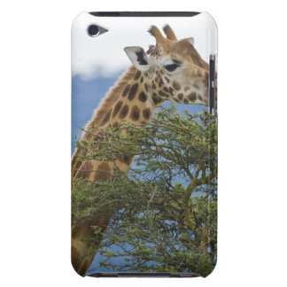 Africa. Kenya. Rothschild's Giraffe at Lake Barely There iPod Cover