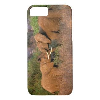 Africa, Kenya, Samburu. Elephant challenge iPhone 8/7 Case