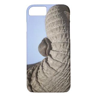 Africa, Kenya, Samburu. Elephant trunk iPhone 8/7 Case