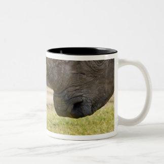 Africa. Kenya. White Rhinos fighting at Lake Two-Tone Coffee Mug