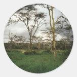 Africa Kenya wild land Round Sticker