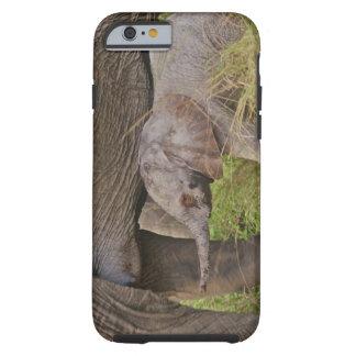Africa, Kenya wildlife, baby elephant. Tough iPhone 6 Case