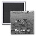 Africa Kenya Zebra in the Wild Refrigerator Magnet