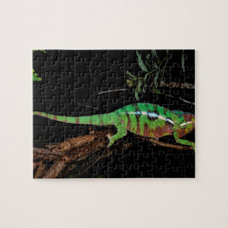 Africa, Madagascar, Ankarana Special Reserve. Jigsaw Puzzle