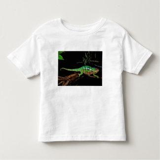 Africa, Madagascar, Ankarana Special Reserve. Toddler T-Shirt