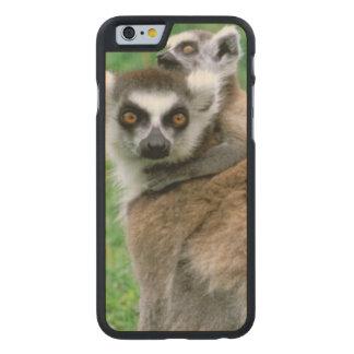Africa, Madagascar, Antananarivo, Tsimbazaza Carved® Maple iPhone 6 Case