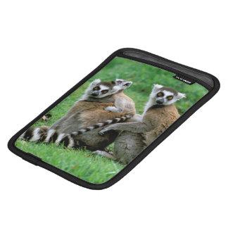 Africa, Madagascar, Antananarivo, Tsimbazaza iPad Mini Sleeve