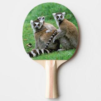 Africa, Madagascar, Antananarivo, Tsimbazaza Ping Pong Paddle