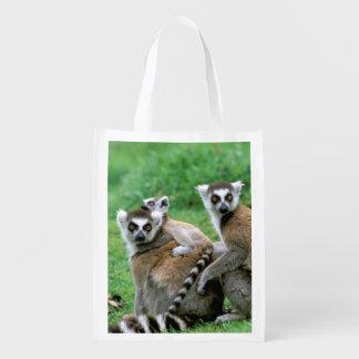 Africa, Madagascar, Antananarivo, Tsimbazaza Reusable Grocery Bag