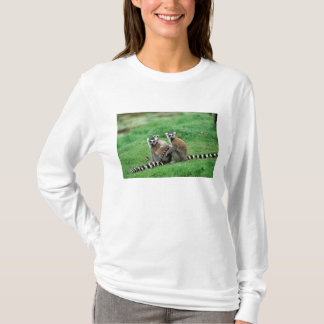 Africa, Madagascar, Antananarivo, Tsimbazaza T-Shirt