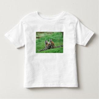 Africa, Madagascar, Antananarivo, Tsimbazaza Toddler T-Shirt