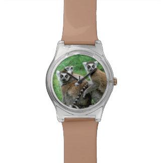 Africa, Madagascar, Antananarivo, Tsimbazaza Watch