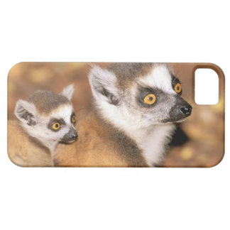Africa, Madagascar, Berenty Private Reserve. Case For The iPhone 5