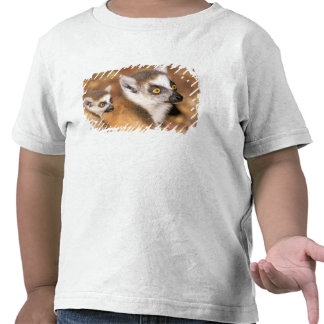 Africa, Madagascar, Berenty Private Reserve. T Shirt