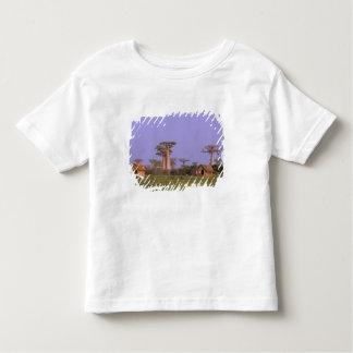 Africa, Madagascar, Morondava. Baobabs Toddler T-Shirt