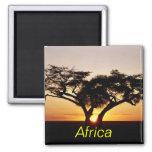 Africa magnet