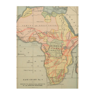 AFRICA: MAP, 1894 WOOD CANVAS