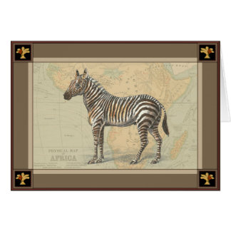 Zebra Gifts T Shirts Art Posters Amp Other Gift Ideas