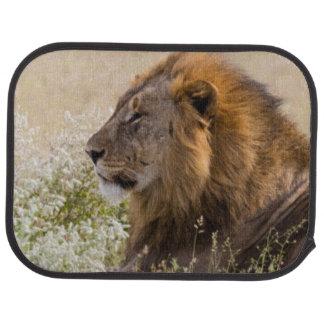 Africa, Namibia, Etosha National Park 2 Car Mat