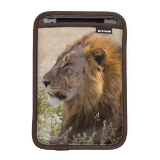 Africa, Namibia, Etosha National Park 2 iPad Mini Sleeve