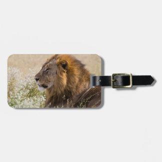 Africa, Namibia, Etosha National Park 2 Luggage Tag