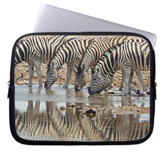 Africa, Namibia, Etosha NP. Burchell's Zebra Computer Sleeves