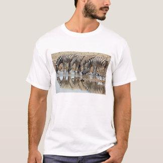 Africa, Namibia, Etosha NP. Burchell's Zebra T-Shirt