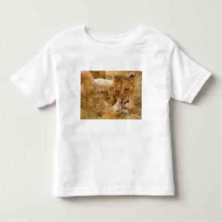 Africa, Namibia, Etosha NP. Lion Panthera Toddler T-Shirt