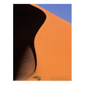Africa, Namibia, Evening light on dunes, Postcard