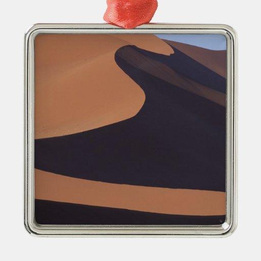 Africa, Namibia, Namib Desert. Sossusvlei. Silver-Colored Square Decoration