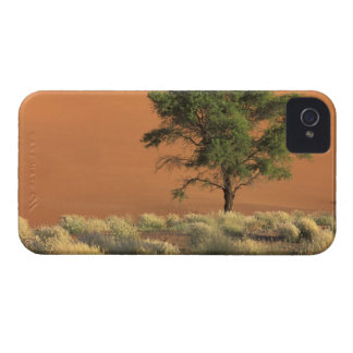 Africa, Namibia, Namib National Park, Sossusvlei iPhone 4 Case-Mate Cases