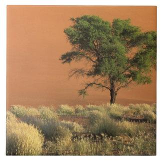 Africa, Namibia, Namib National Park, Sossusvlei Tile