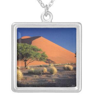 Africa, Namibia, Namib-Naukluff Park, Sossosvlei Silver Plated Necklace