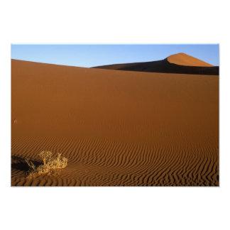 Africa, Namibia, Namib Naukluft National Park, 2 Photo Print