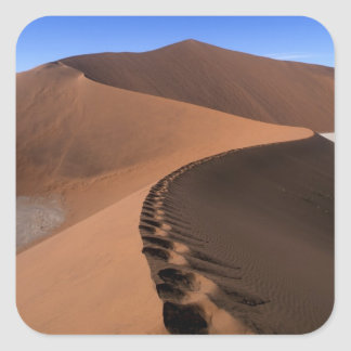 Africa, Namibia, Namib Naukluft National Park, 2 Square Sticker