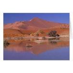 Africa, Namibia. Namib-Naukluft Park. 2 Greeting Card