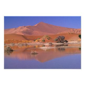 Africa, Namibia. Namib-Naukluft Park. 2 Art Photo