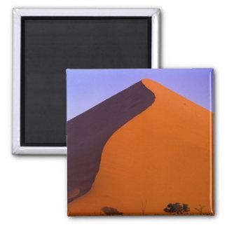 Africa, Namibia, Namib NP, Sossusvlei, Sand Magnet
