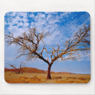 Africa, Namibia, Naukluft National Park, Mouse Pad