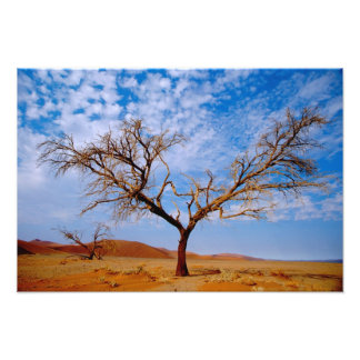 Africa, Namibia, Naukluft National Park, Photo Print