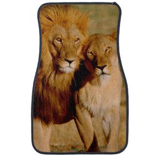 Africa, Namibia, Okonjima. Lion & lioness Car Mat