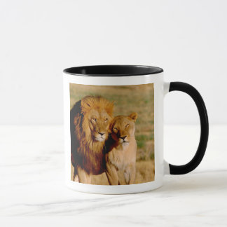 Africa, Namibia, Okonjima. Lion & lioness Mug