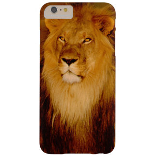 Africa, Namibia, Okonjima. Lone male lion Barely There iPhone 6 Plus Case