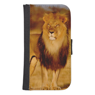 Africa, Namibia, Okonjima. Lone male lion Samsung S4 Wallet Case