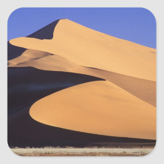 Africa, Namibia, Sesriem and Sossusvlei Namib Square Sticker